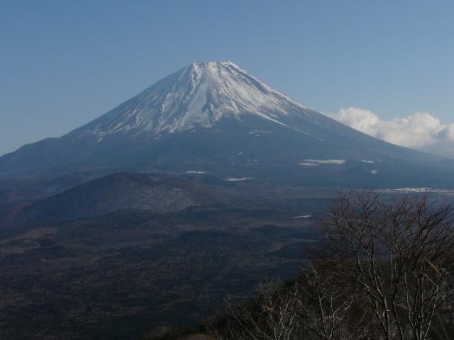 パノラマ台山行15_パノラマ台富士展望2.jpg