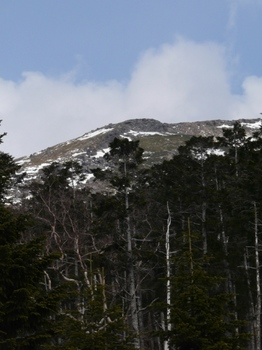 100502北八ヶ岳_5オーレン小屋から観る硫黄岳1541.jpg